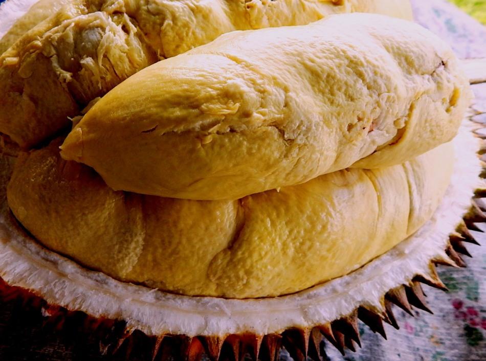 durian nanas