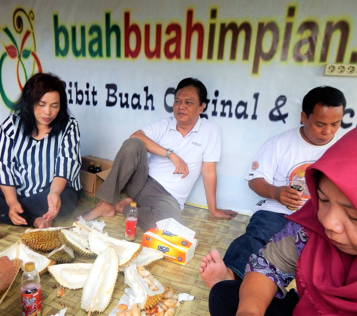Bibit Durian 20 (2)
